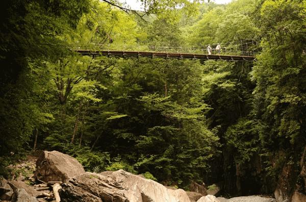 Brückenexperiment